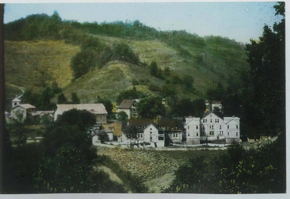Early Buckhorn